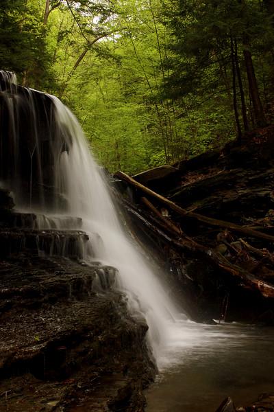 M'Lady Falls #2, Reynolds Gully, Springwater NY.