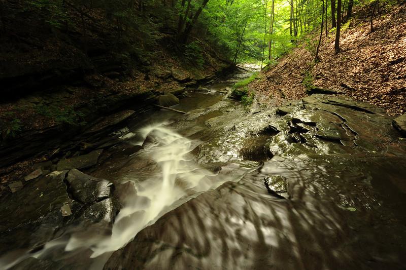 Creek 38 DSC_5013