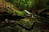 Creek 7 DSC_4944