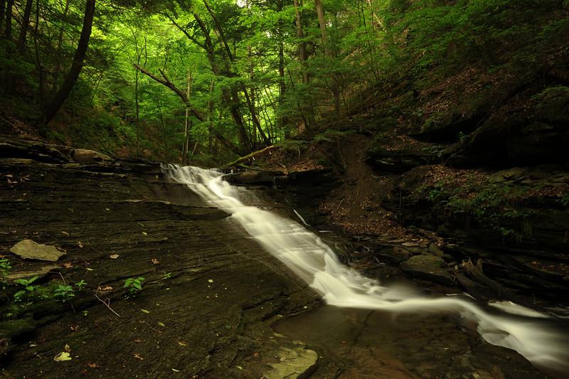 Creek 9 DSC_4949
