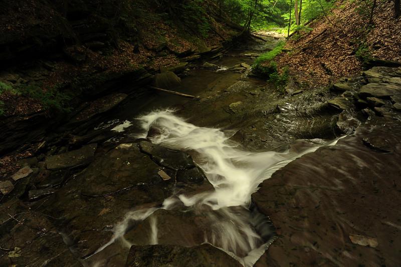 Creek 11 DSC_4952