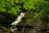 Creek 24 DSC_4984