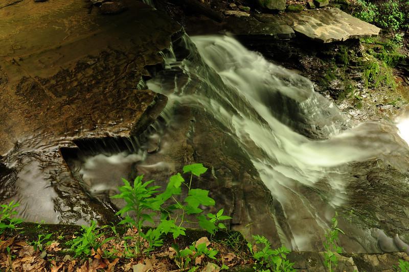 Creek 3 DSC_4937