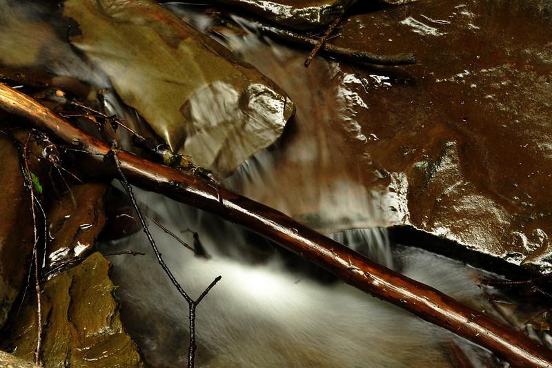 Creek 42 DSC_5028