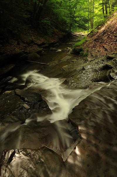 Creek 13 DSC_4956