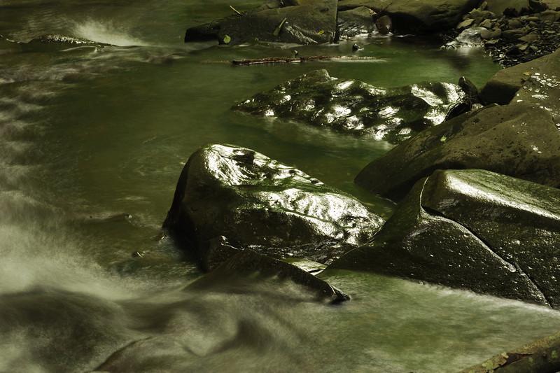 Creek 44 DSC_5036