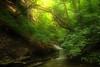 Creek 16 DSC_4964