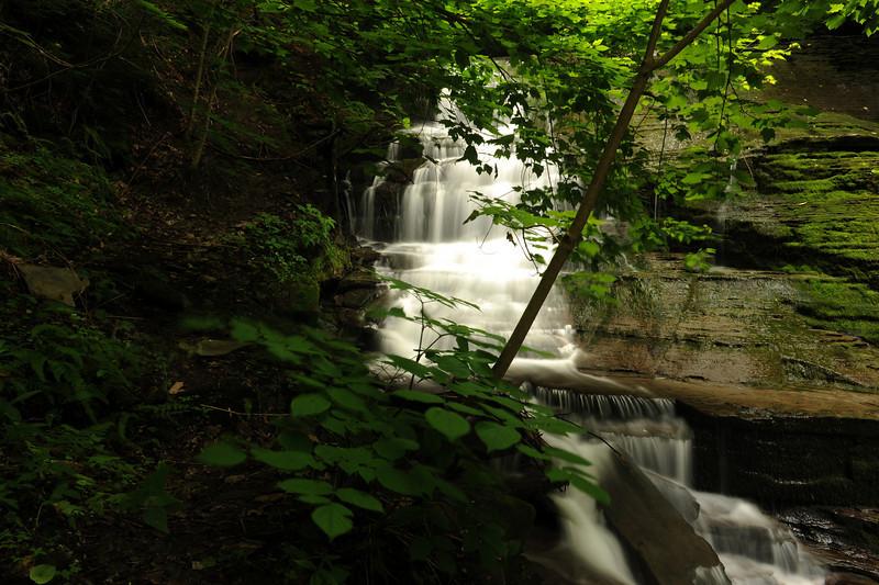 Creek 26 DSC_4988