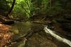 Creek 39 DSC_5014