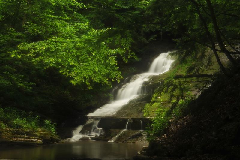 Creek 30 DSC_5001