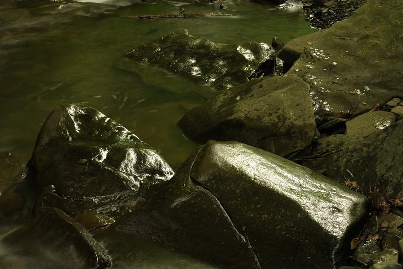 Creek 46 DSC_5039