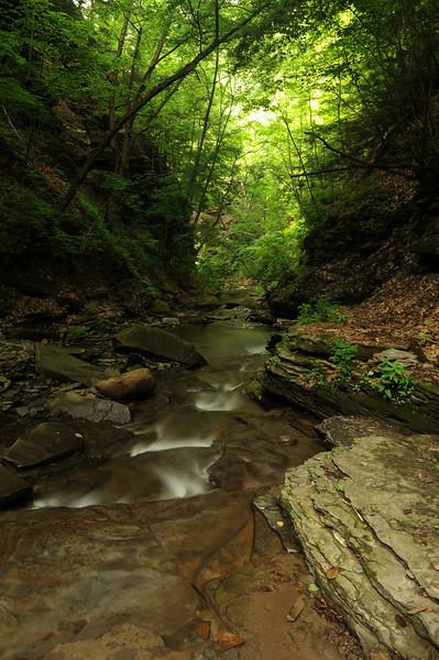Creek 28 DSC_4996