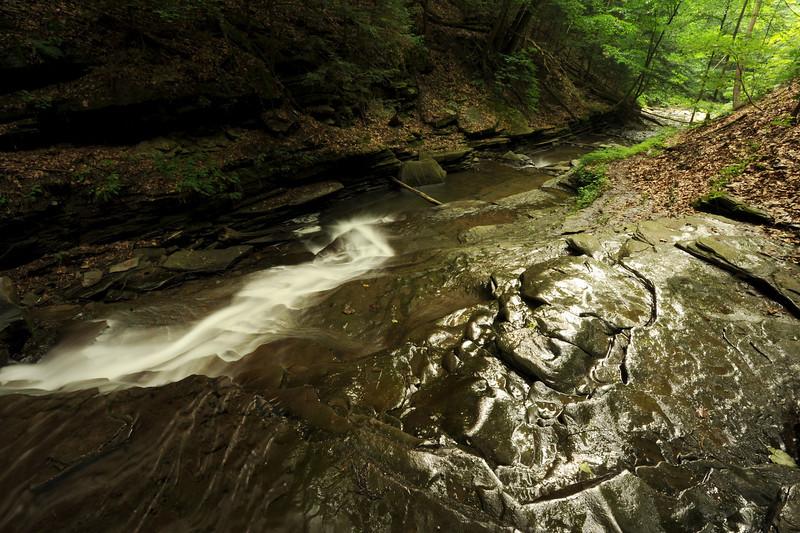 Creek 37 DSC_5012
