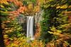 Taughannock Falls. dreamy.