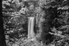Taughannock falls 101611 5 bw DSC_5239