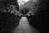 Taughnnock 118 DSC_3110