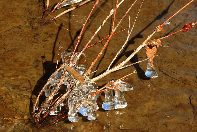 Wiscoy Falls 032711 42 cropped DSC_7482