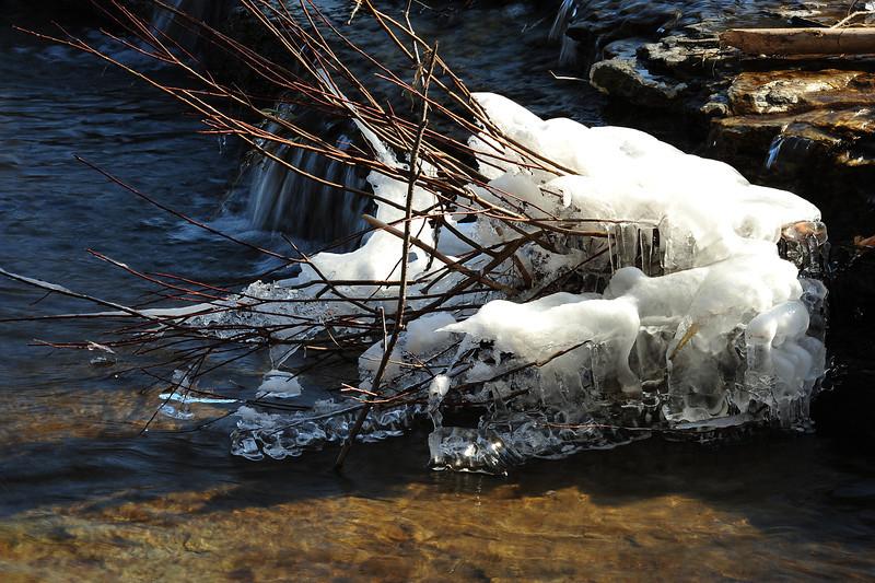 Wiscoy Falls 032711 49 DSC_7503