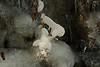 Wiscoy Falls 032711 37 DSC_7469