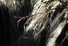 Wiscoy Falls 032711 46 DSC_7492
