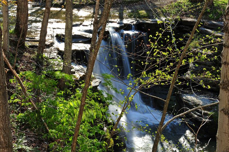Twin Falls 27 DSC_0550