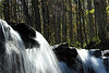 Twin Falls 13 DSC_0527