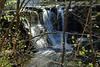 Twin Falls 25 DSC_0546
