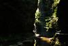 Watkins Glen 9 DSC_8435