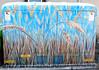 Fort Collins Colorado - Art in Public Places
