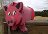 The Pink Piggie - Alamosa Colorado