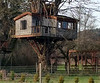 Multi roomed tree house WITH a crows nest - WORKS!