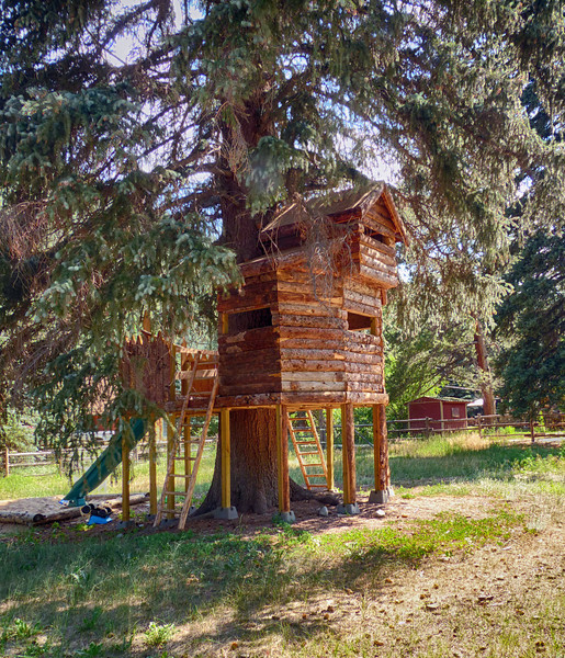 We've encountered many a tree-house but never a log cabin one! Near Idaho Springs while riding our motorcycles.