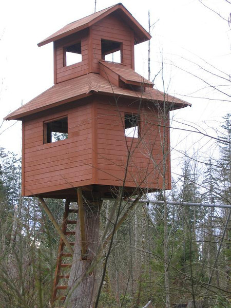 Washington, the first ever TWO STORY treehouse we've ever seen. COOL!!