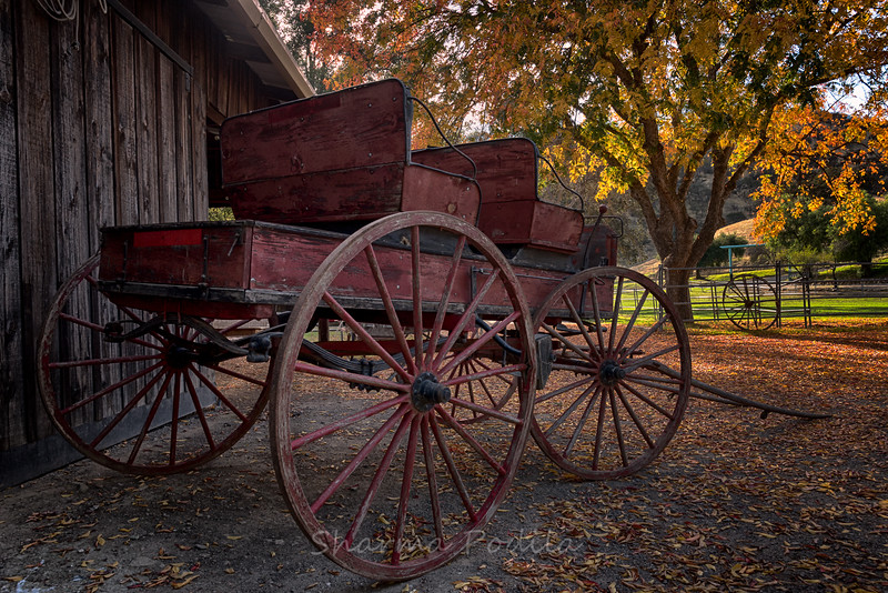 Parked Carriage at the Ranch, Paicines, California