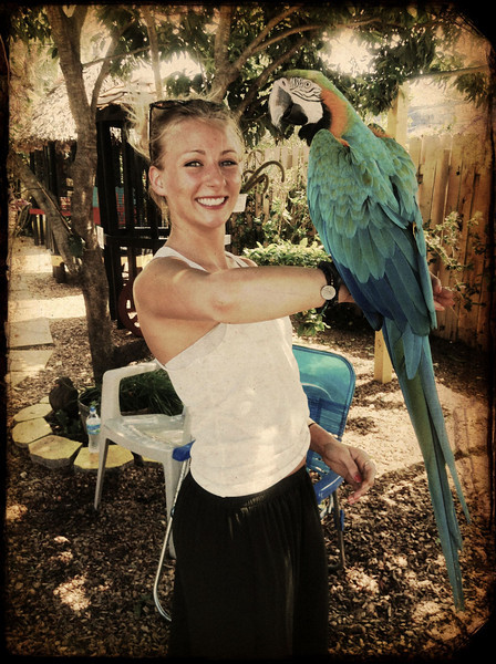 Sarah with Clara The Blue & Gold Macaw