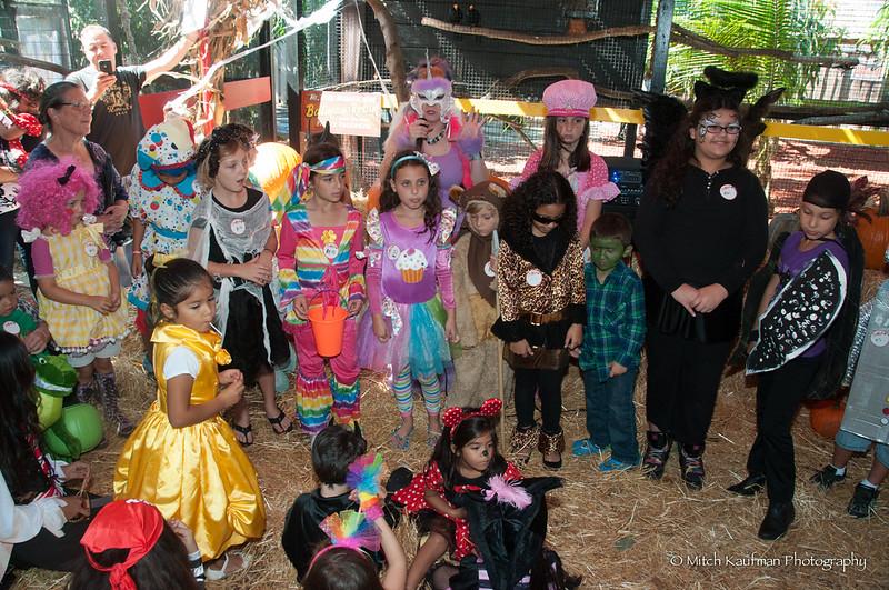 Halloween 2012-TG-453