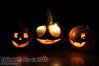 2009 Halloween pumpkins.