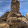 060 Limestone tufa towers, Winnemucca Lake