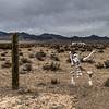 013  Hot Creek Valley, Nevada.