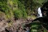 Waialua Falls