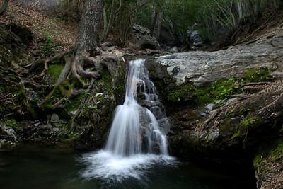 Rose Creek Falls