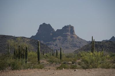 Sonora AZ