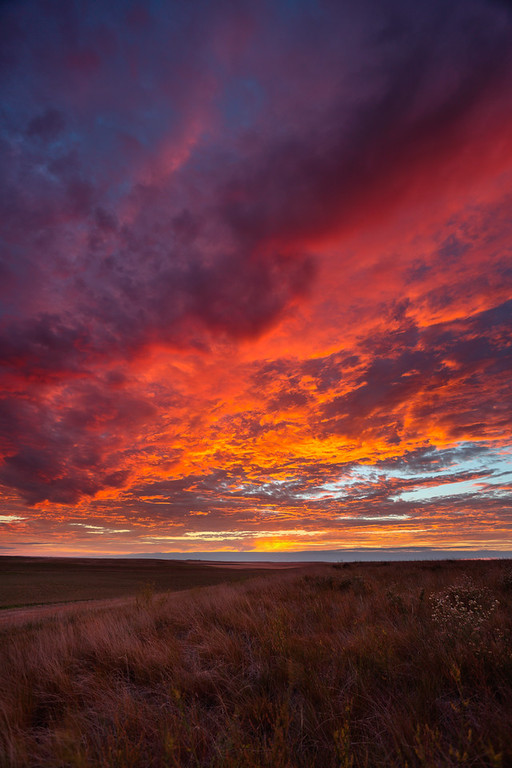 One of the prettiest sunsets I've seen taken by the side of the road in South Dakota.