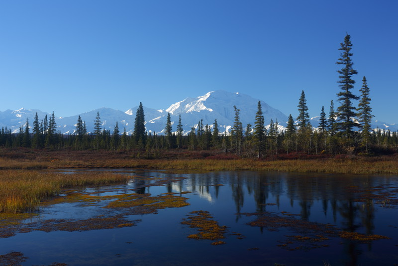 "Mt McKinley, Denali, ""The High One"". My own ""reflection pond."""