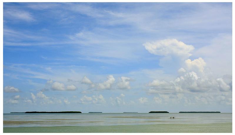 MANGROVE KEYS - Flamingo, Florida