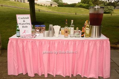 2018 Play for Pink at Hampton Hills Golf Club