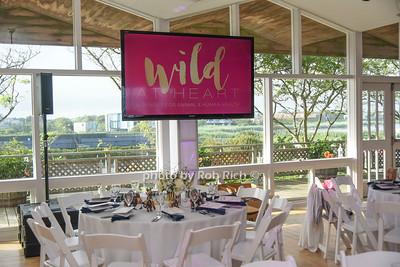 Wild at Heart gala to benefit Veterinarians International 2018