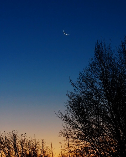 Crescent Morning...