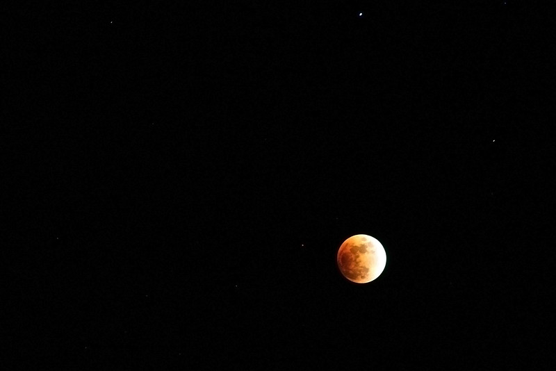 Rose Eclipse...