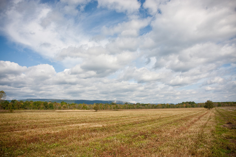 Shawangunk Grasslands in early autumn